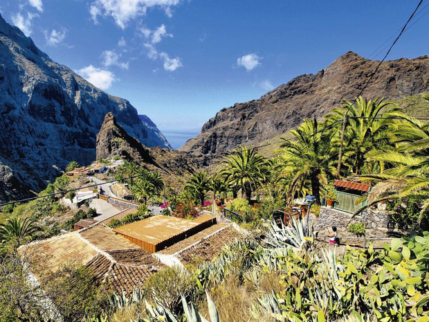 5 excursions à Tenerife