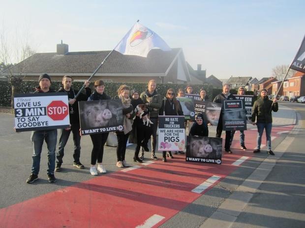 Dierenactivisten blokkeren ingang slachthuis De Coster in Ruiselede