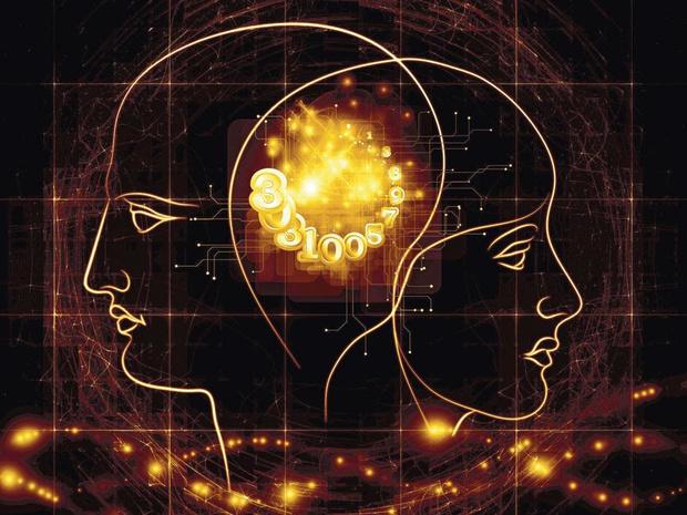 Hersenen seksen, wetenschappelijk gefundeerd?