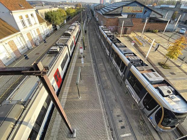 Des trains et des trams gratuits?