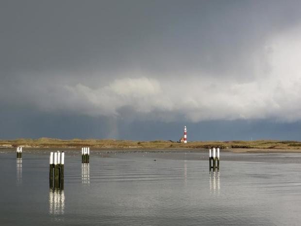 Strand aan IJzermonding in Nieuwpoort wordt reservaat