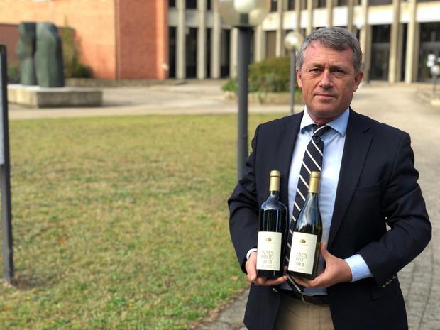 """Lodewijk Waes, advocaat én wijnbouwer: """"Afwisseling houdt het boeiend"""""""