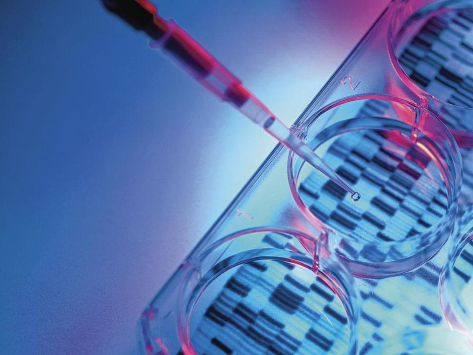 Douze conseils à l'investisseur en biotechs