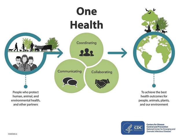 One World One Health