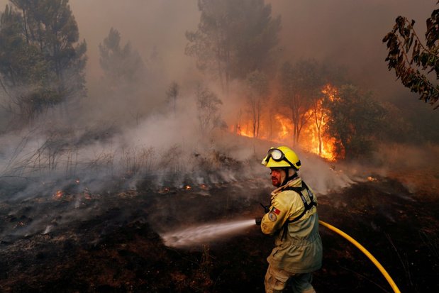 Acht gewonden bij bosbranden in Centraal-Portugal