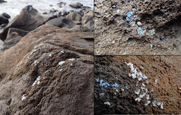 Le plasticroûte, une nouvelle forme de pollution marine qui inquiète