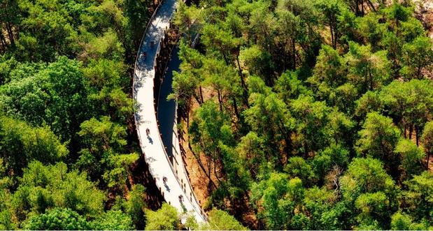 La piste cyclable Pédaler dans les arbres en Belgique remporte le prestigieux Dezeen Awards 2020