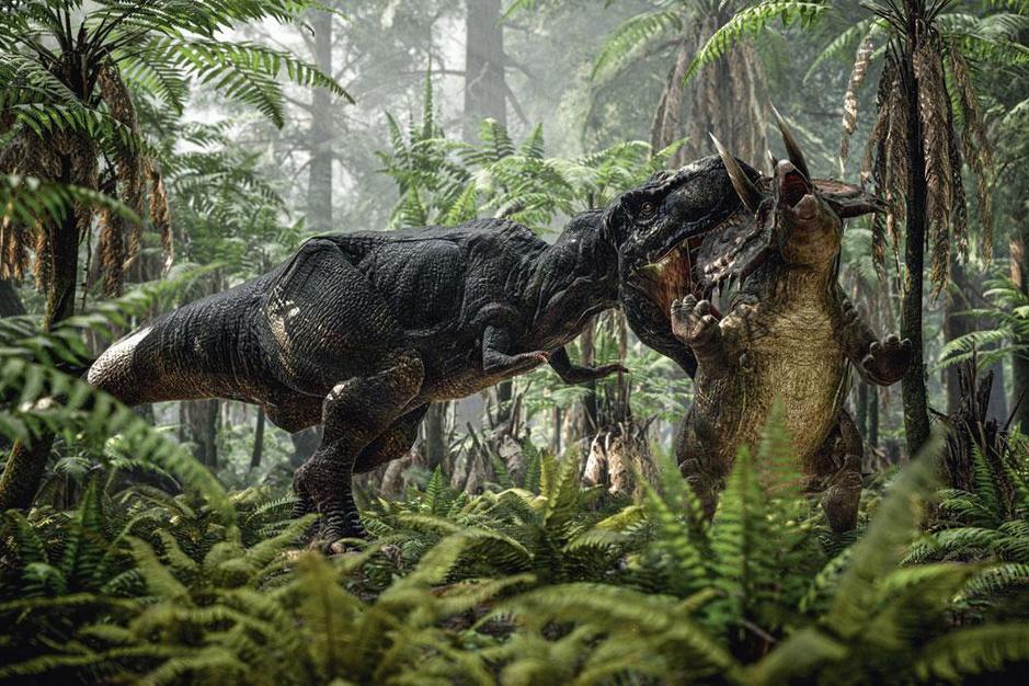 Wat leert 'de vondst van de eeuw' ons over de dinosaurussen?