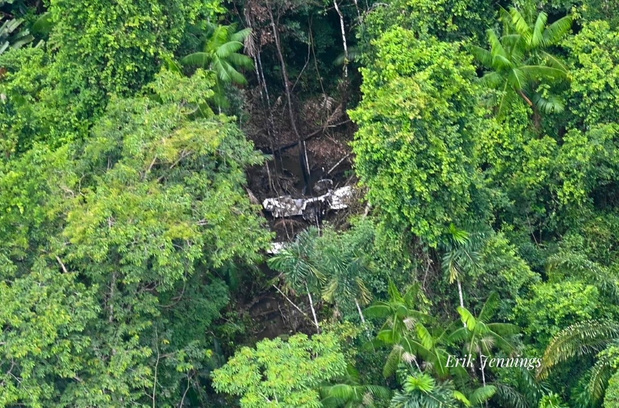 Un pilote survit 36 jours dans la forêt amazonienne (récit)