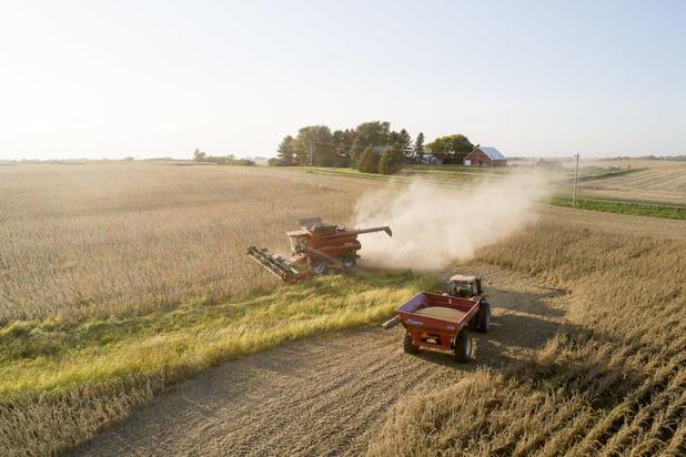Voedselverspilling begint al op de boerderij