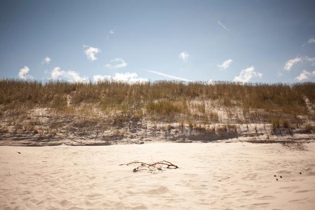 'Sahara van De Panne' krijgt een opknapbeurt