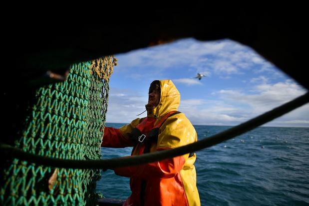 Vissen met zware sleepnetten is even vervuilend als luchtvaart