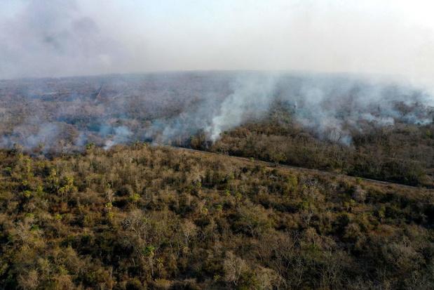 Bosbranden houden lelijk huis in Boliviaanse natuurreservaten