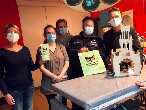 Belfort-kattenhuisjes moeten sterilisatie aanmoedigen