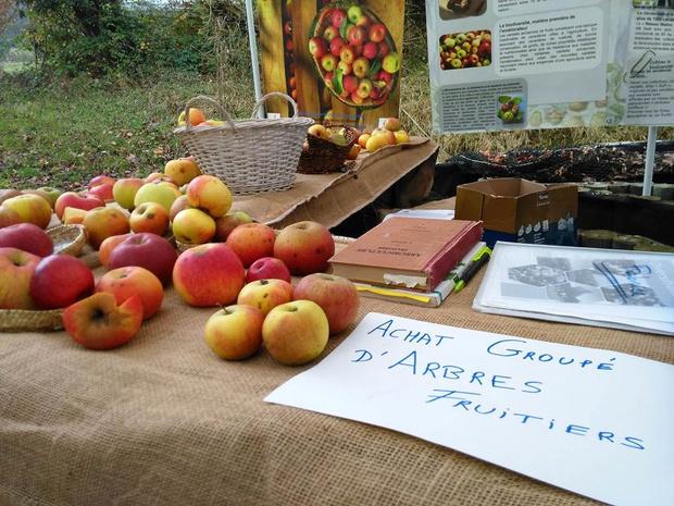 C'est la Foire aux pommes à l'Aquascope de Virelles ce week-end !