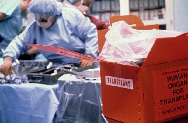 HLA 'mismatch' et risque de cancer de la peau après une greffe d'organe