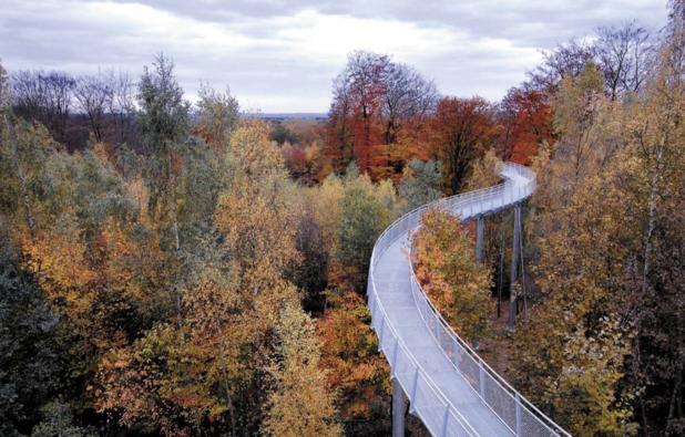 Un automne en Wallonie picarde : nos bons plans