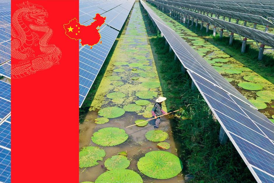 Hoe groen is Xi Jinping echt? 'Ecologie is het middel, autoritarisme het doel'