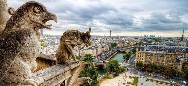 Reliques, orgue, rosaces... Quels  trésors abrite Notre-Dame de Paris