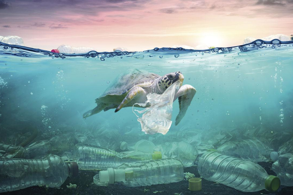 Over de alternatieven voor plastic verpakkingen: 'Er bestaat niet zoiets als ecologisch materiaal'