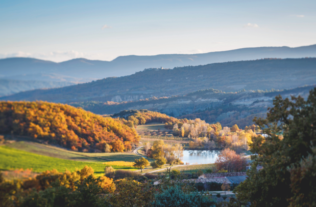Een fijn wijndomein: Les Davids in Avignon combineert architectuur, kunst en wellness