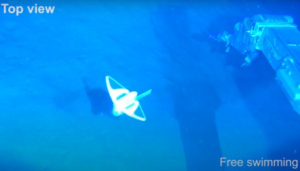 Un poisson-robot capable de descendre au plus profond de l'océan