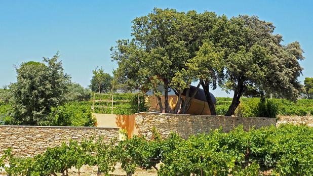 Wijntoerisme 3.0 in de Vaucluse