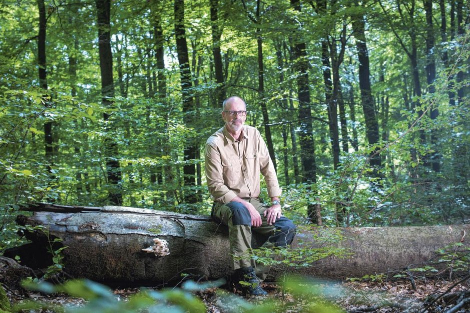Boswachter Peter Wohlleben: 'Ook bomen kunnen pijn voelen'