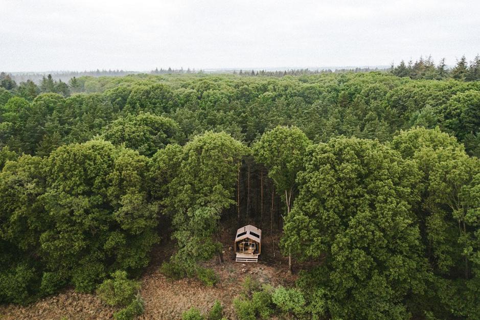Een nacht in het bos: 7 keer logeren in het groen