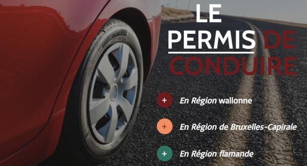 Infographie: le permis de conduire selon les différentes régions de Belgique