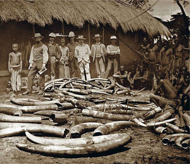 L'histoire du Congo est loin de se résumer à Léopold II (ligne du temps)