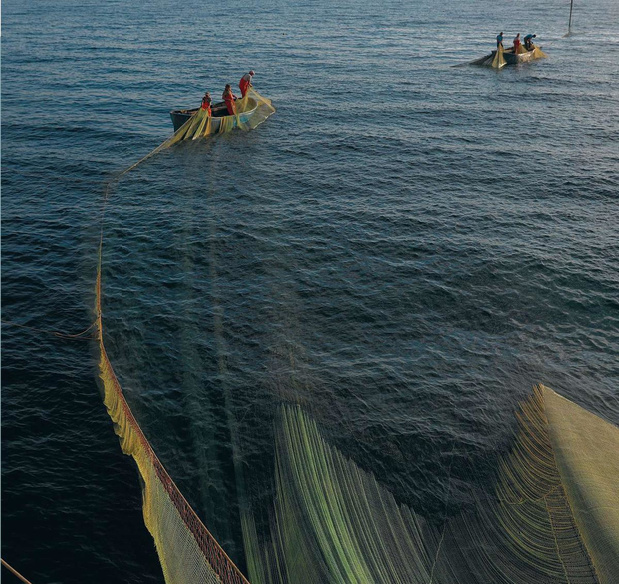 Des cannes à la place des filets, Philippe Mahieu a choisi une pêche moins destructrice