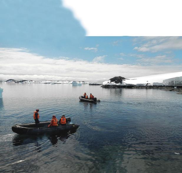 Les moules envahissent l'Antarctique