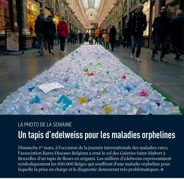 Un tapis d'edelweiss pour les maladies orphelines