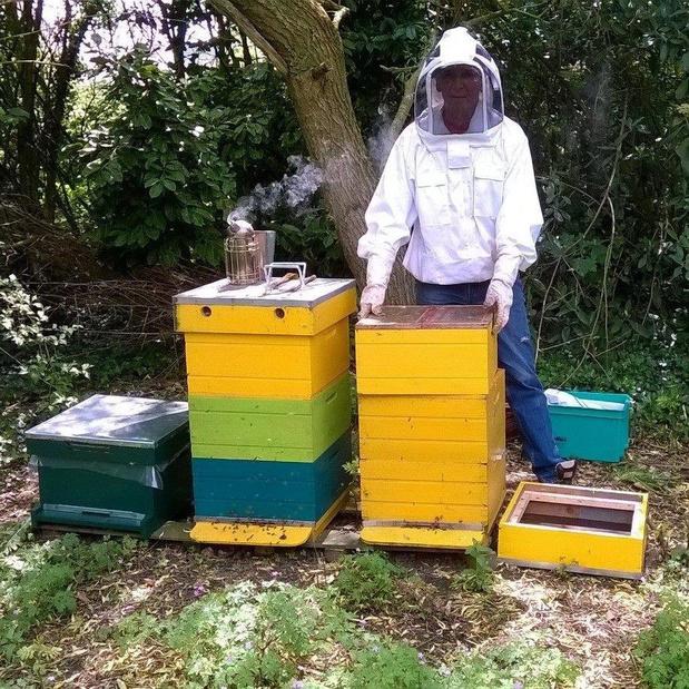 Jonge vandalen die bijenkasten vernielden in Bovekerke zijn gevat