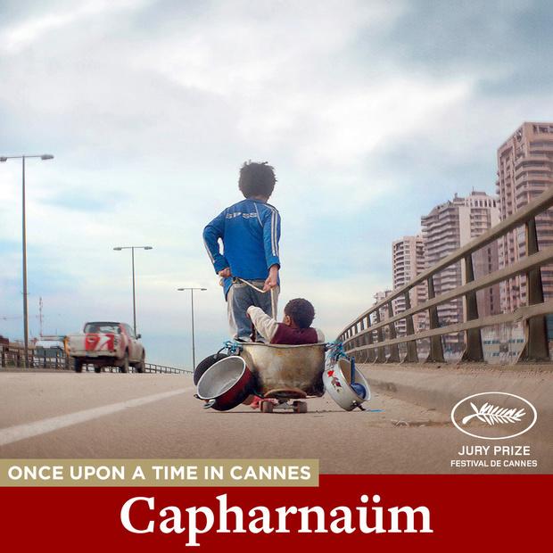 Focus vous offre 5 codes pour voir Capharnaüm et Captain Fantastic en VOD