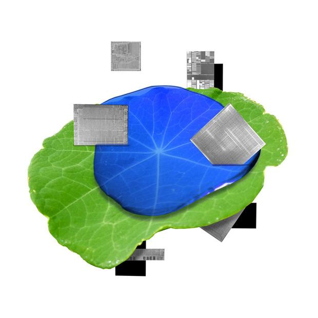 IBM versnelt evolutie richting duurzaamheid