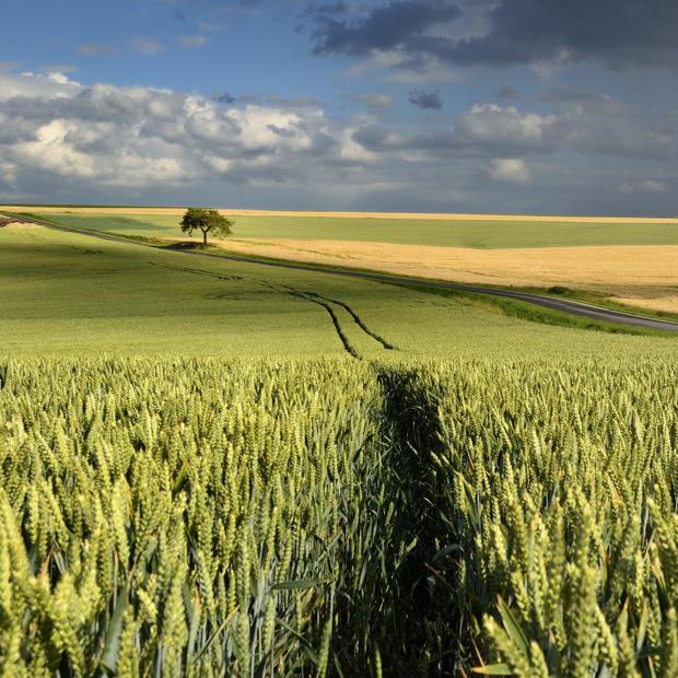 Une première étude de santé environnementale en Wallonie