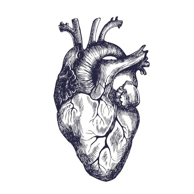 Greffes d'organes et Covid