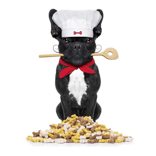 Quel repas festif pour nos animaux?