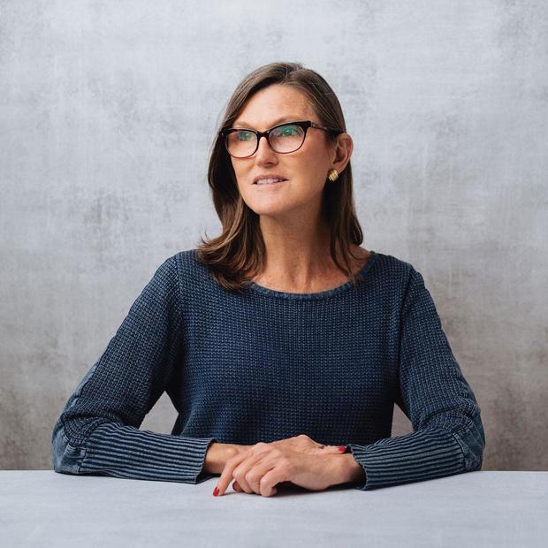 Cathie Wood, CEO van Ark Invest en een van de meest gevolgde beleggers ter wereld