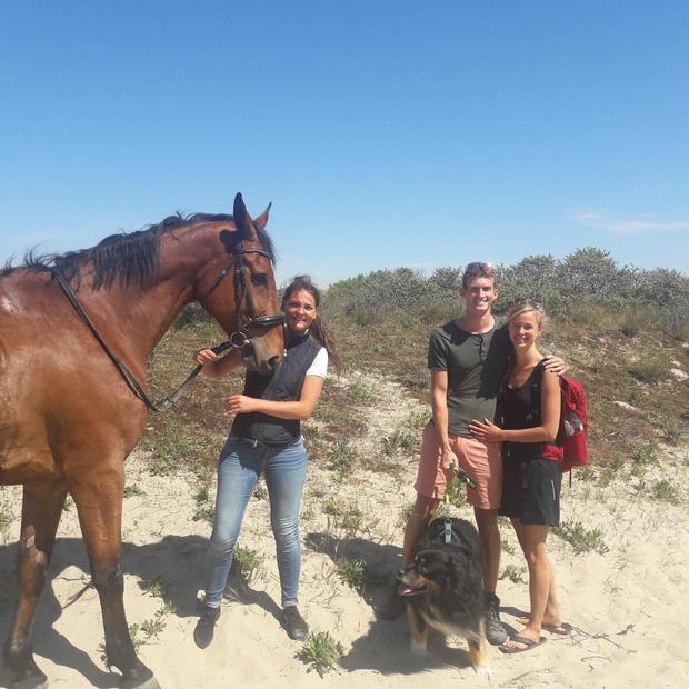 Paard maar liefst 16 uur vermist in de duinen, wandelaars vinden het dier terug in put