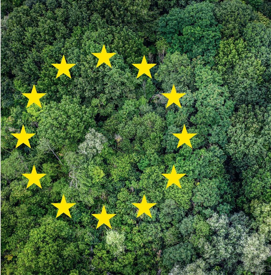 De Europese Green Deal onder de loep: wat moet er gebeuren en wie gaat het betalen?