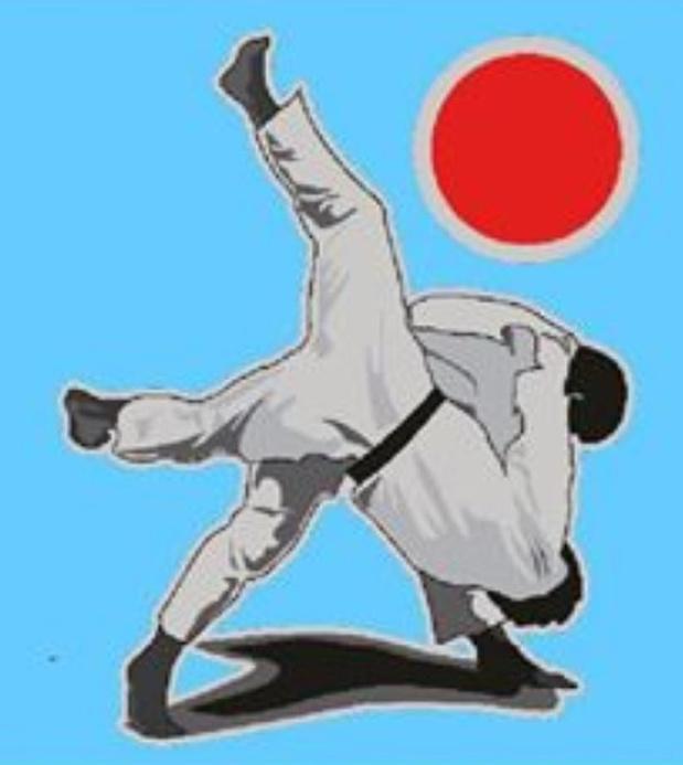 Judoka's trainen voortaan buiten in Koolskamp