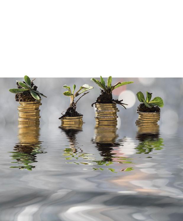 Placements: les investissements durables sont-ils nuisibles?