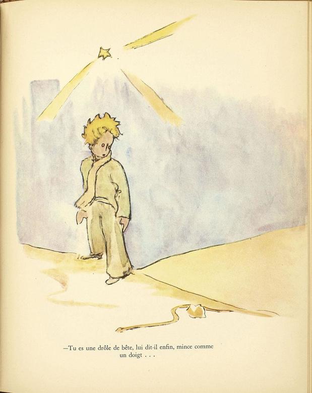 Le Petit Prince, retour sur une success story