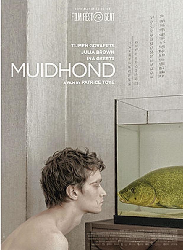 5x dvd Muidhond
