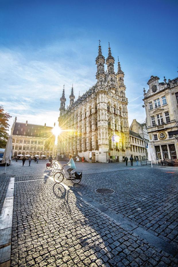 L'hôtel de ville de Louvain, côté face et côté pile
