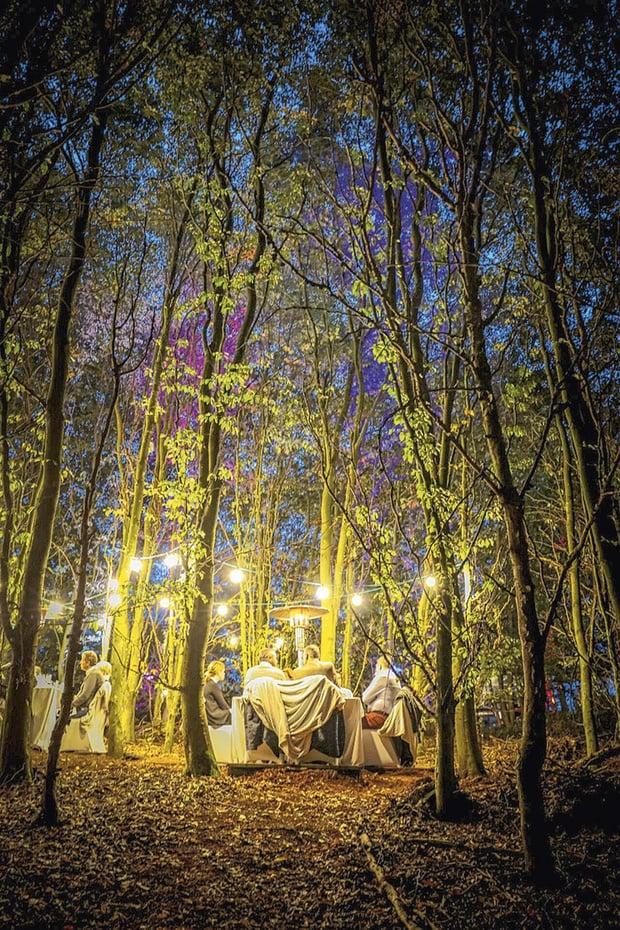 Dîners dans les bois