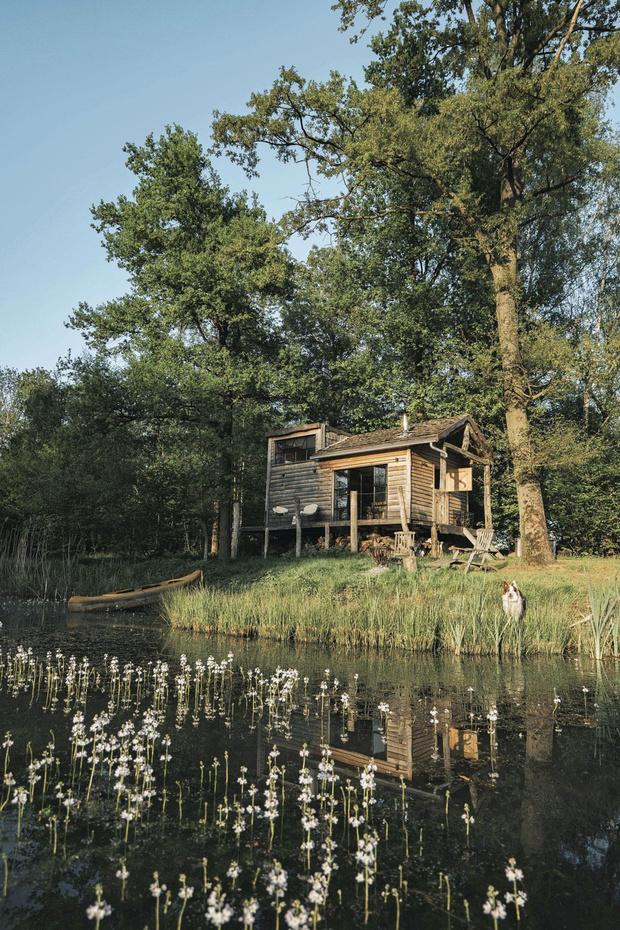 Reposons-nous dans les bois: les cabanes les plus originales pour un séjour en Belgique